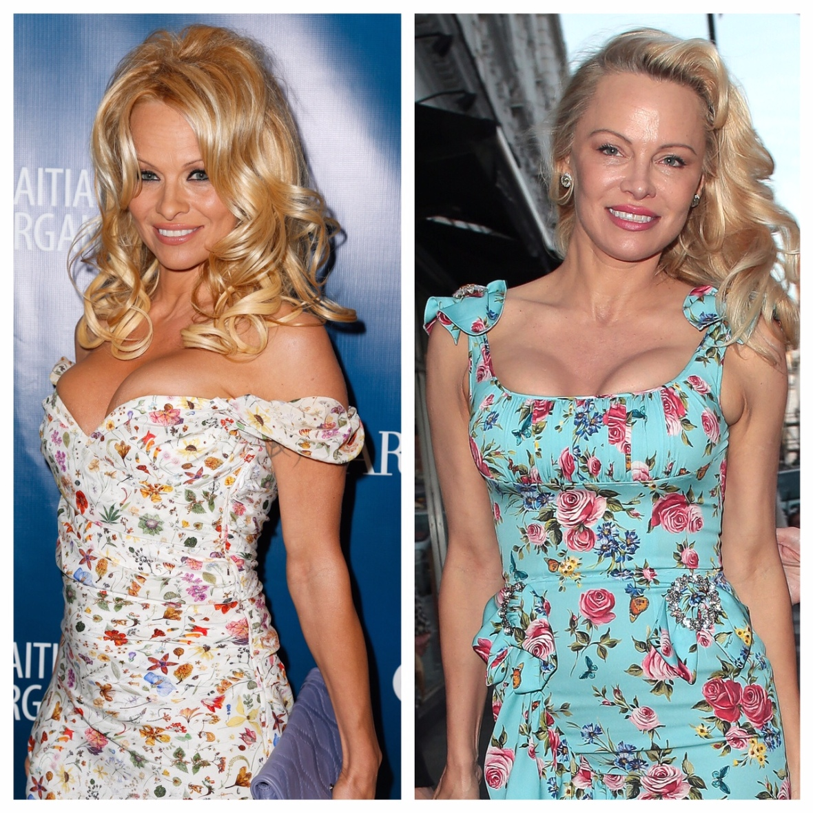 pamela anderson 2013 vs. 2017 getty images