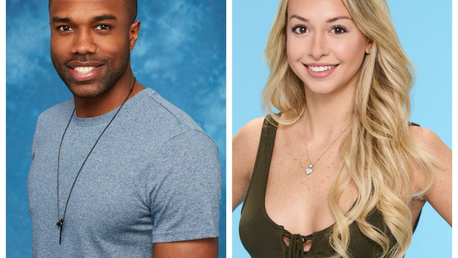 why-is-bachelor-in-paradise-cancelled