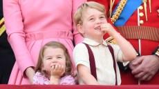 prince-george-princess-charlotte-growing-up