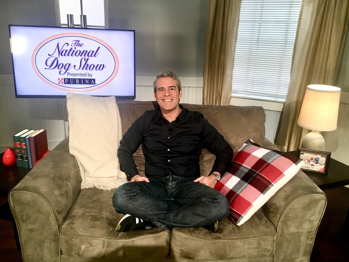 andy cohen purina