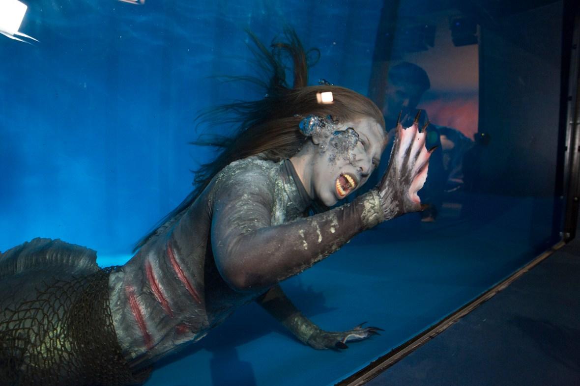 siren - mermaid