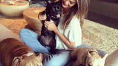 chrissy-teigen-dogs