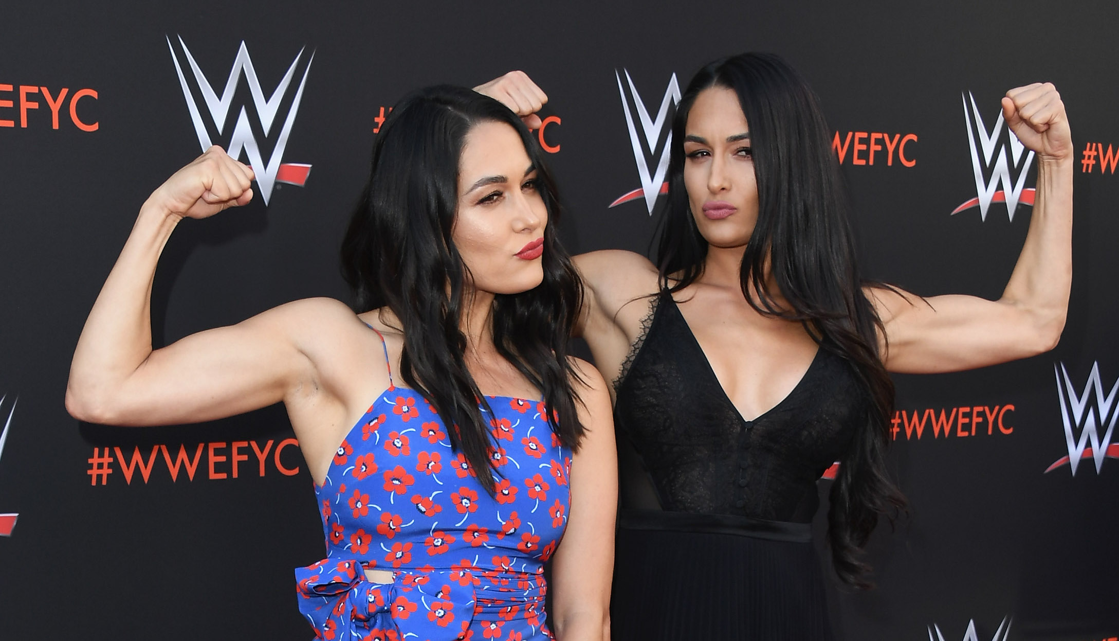 Sexy Fotos The Bella Twins naked photo 2017