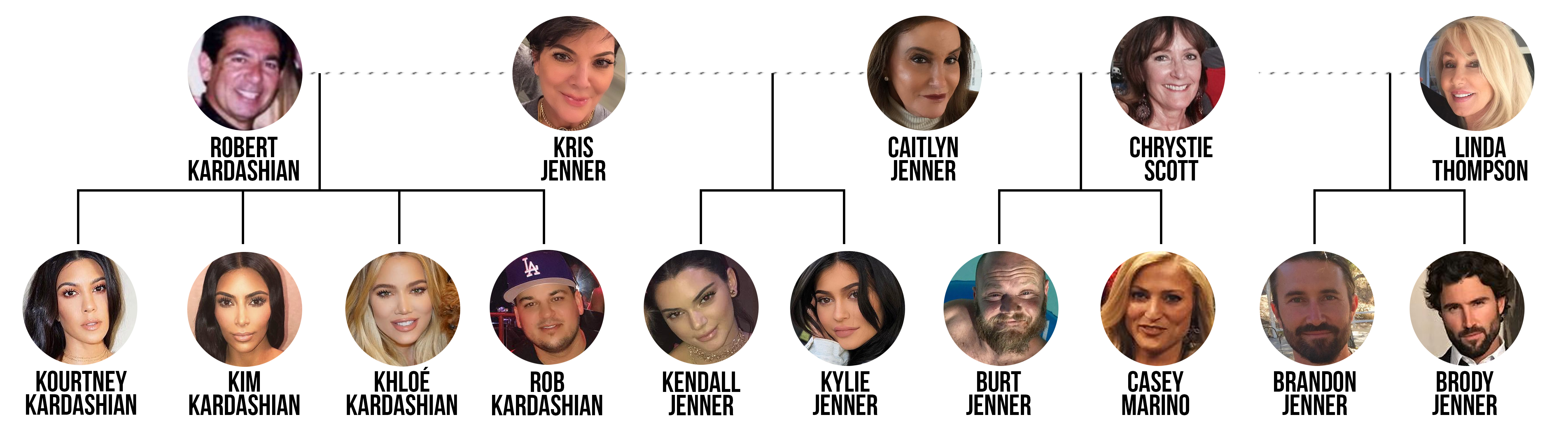 picture of a family tree