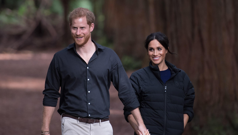 Prince Harry Meghan Markle hairline