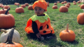 True Thompson wearing a pumpkin Halloween costume