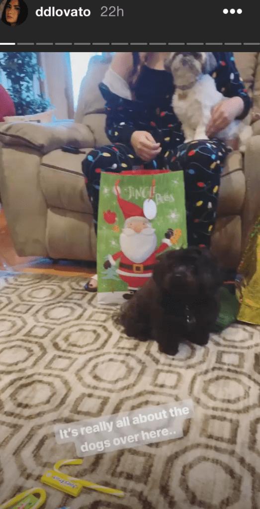 Demi Lovato's Christmas