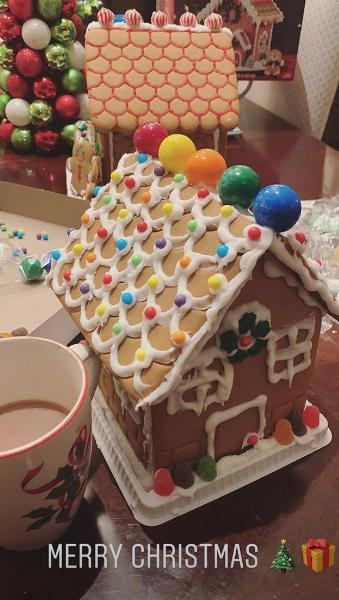 Demi Lovato's gingerbread house