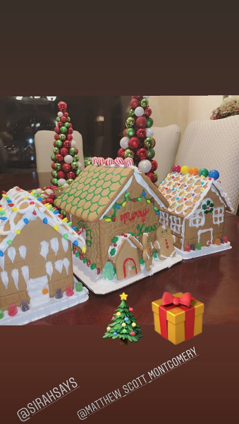 Demi Lovato's friends' gingerbread houses