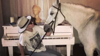 Lady Gaga and her white horse
