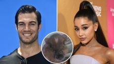 Sexy Veterinarian Dr. Evan Antin Says Ariana Grande Might Be In for A Big Surprise With Piggy Smallz