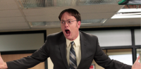 Dwight Schrute on The Office played by Rainn Wilson