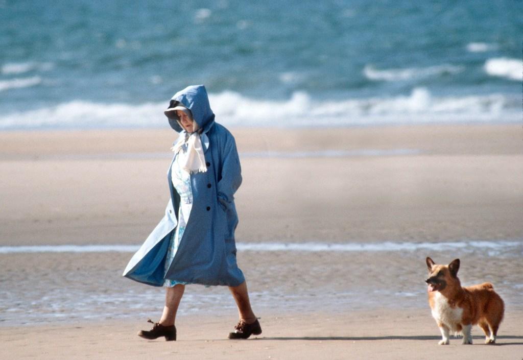 Queen Elizabeth, On The Beach, Walking Her Corgi