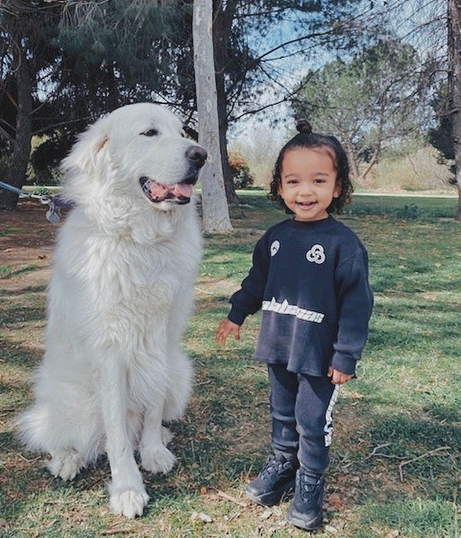 Chicago West Laughs in Black Outfit With Big White Dog