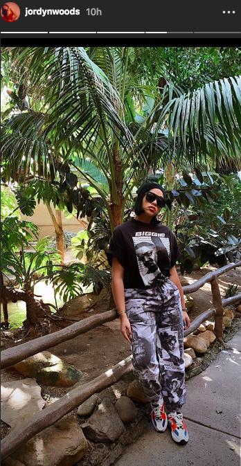 Jordyn Woods at the zoo instagram story