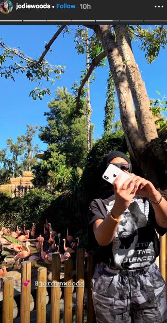 Jordyn Woods at the zoo instagram story from sister jodie woods