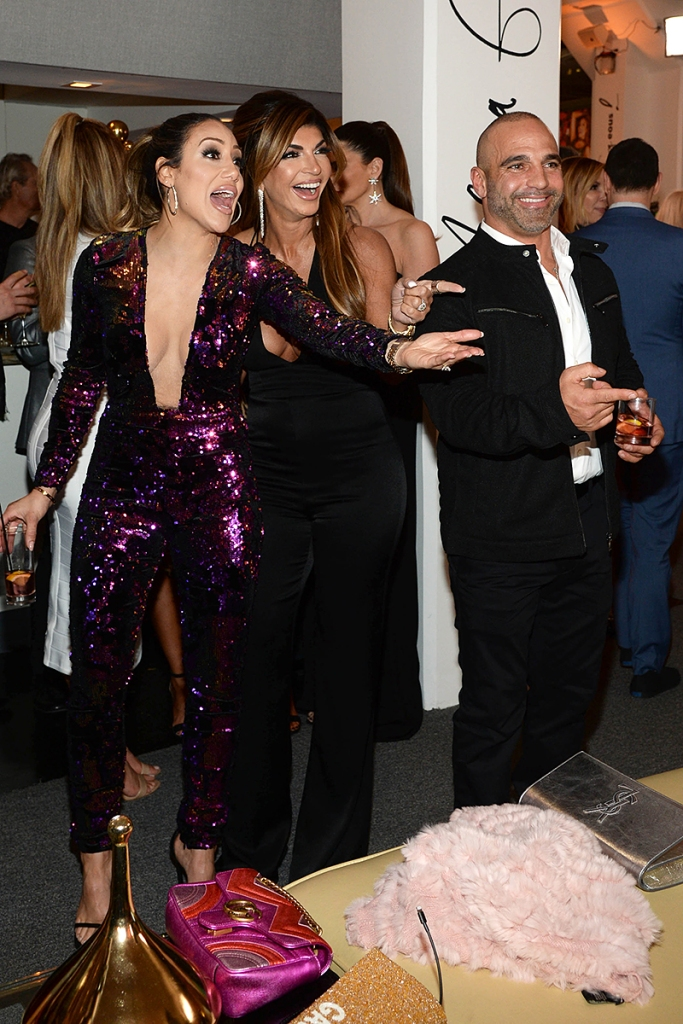 Teresa Giudice Parties Melissa Gorga 40th Birthday Party With Husband Joe's Deportation Looming