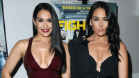 Nikki and Brie Bella posing together.