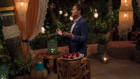 Bachelor Host Chris Harrison Stands on Bachelor in Paradise Rose Ceremony in Blue Suit Jacket and Pink Shirt Before a Rose Ceremony
