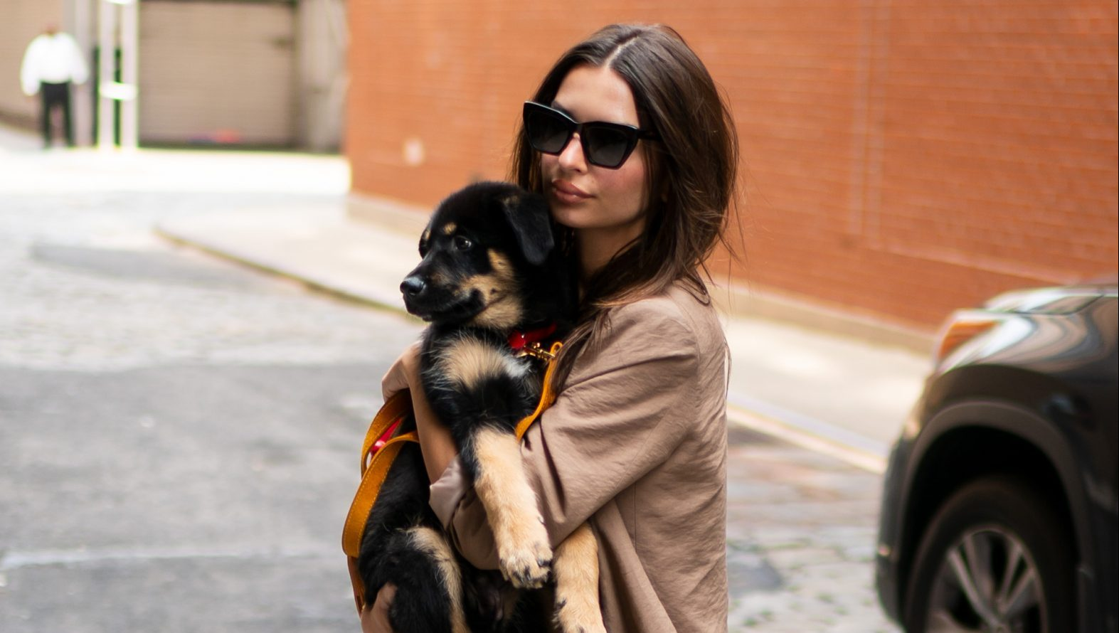 Woof 'n Wait! Emily Ratajkowski Shows Off Her Sexy Legs While Waiting for an Uber With Her Puppy Colombo