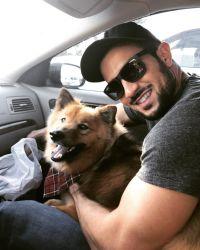 Copper Ash Instagram Dogs