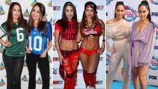 Nikki Brie Bella Transformation
