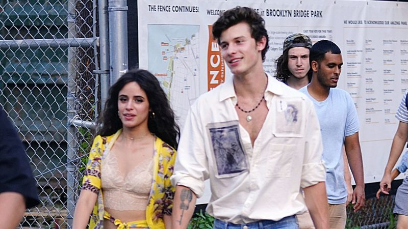 Camila Cabello 'Supports Her Man' Shawn Mendes at Brooklyn Concert Despite Her VMAs Schedule