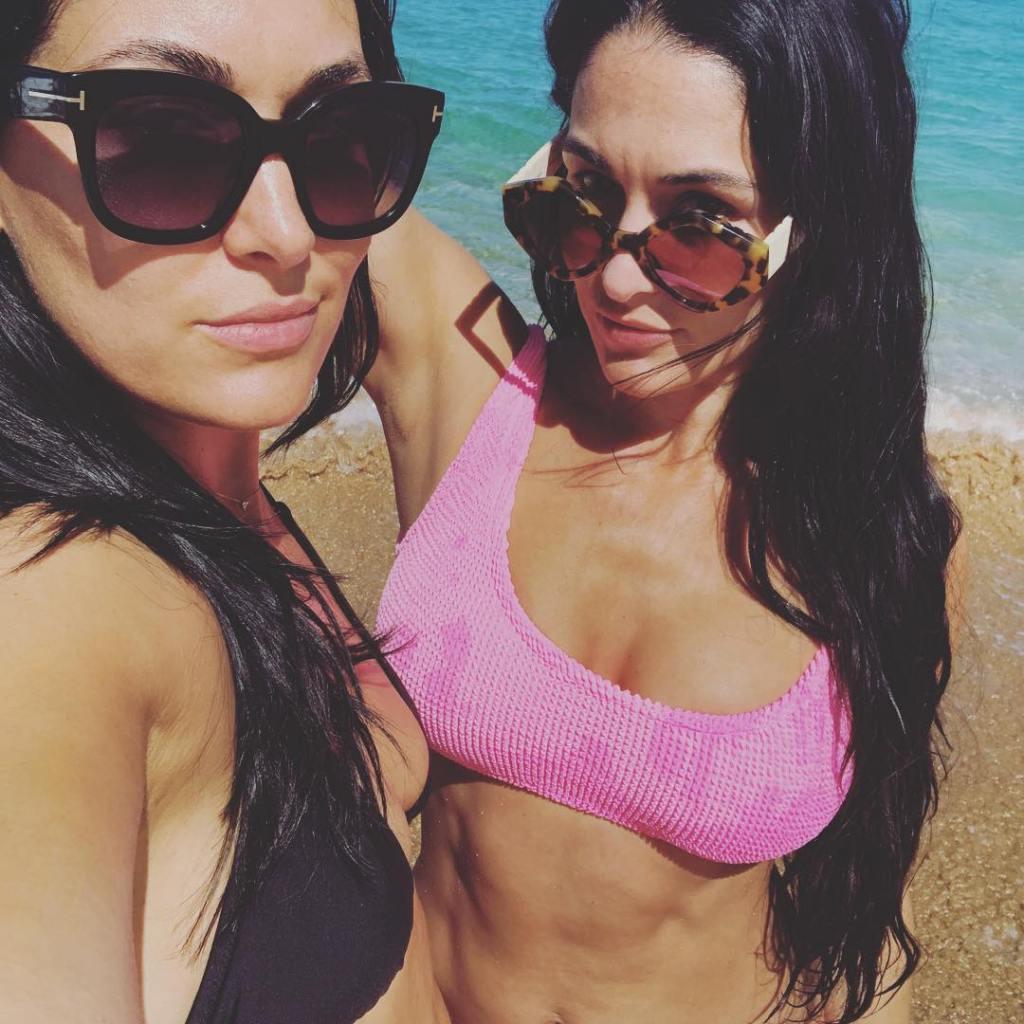 Nikki Bella in Pink Swimsuit and Brie Bella in Black Bikini Selfie in Bikinis