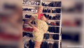 Amber Rose posing for a mirror selfie at 9 months pregnant
