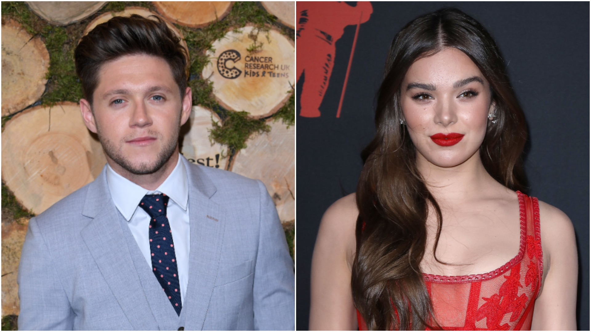 Niall Horan Look Alike Porn niall horan's 'put your heart on me' lyrics reference hailee