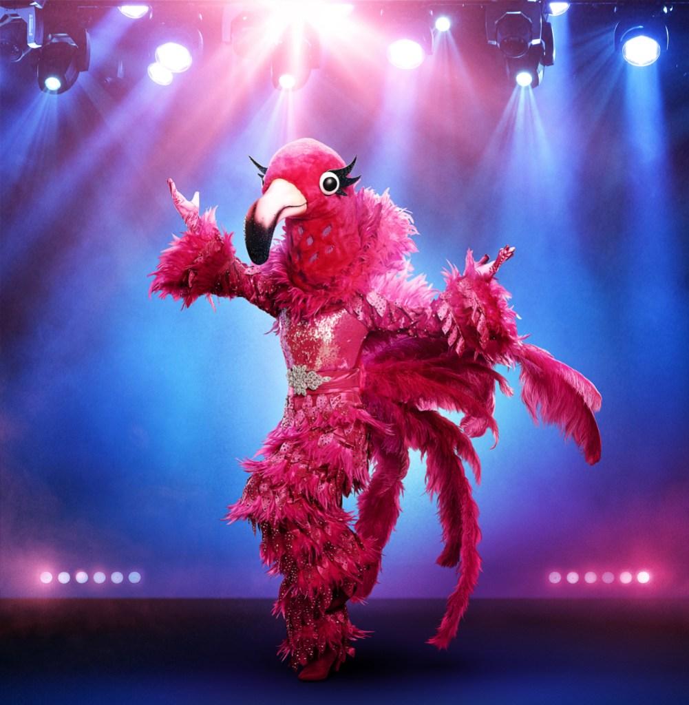 THE MASKED SINGER: The Flamingo.