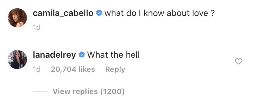 Lana Del Rey Camila Cabello Instagram Comment