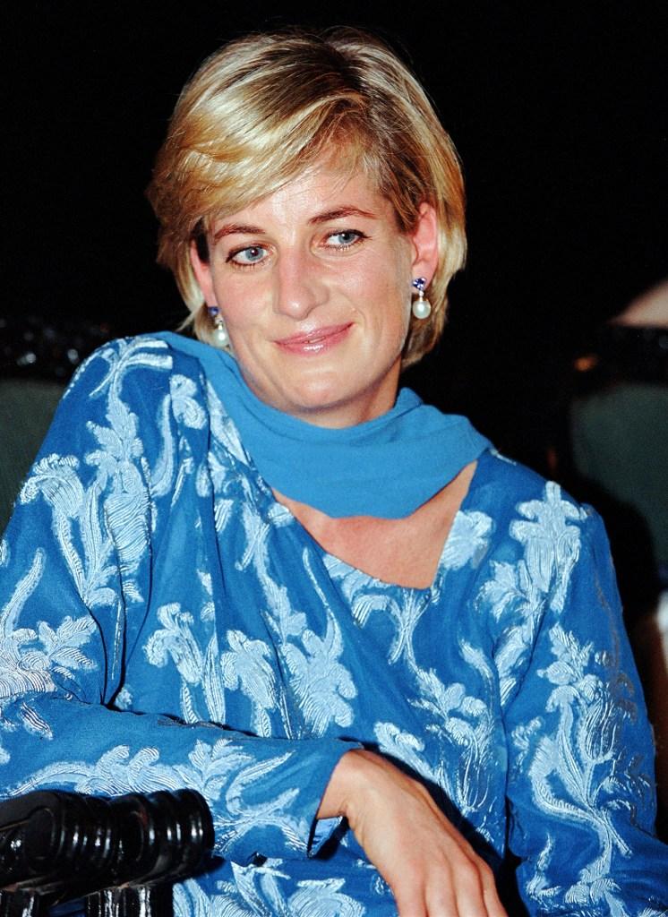 Fatal Voyage Diana Case Solved Investigates Driver That Killed Her