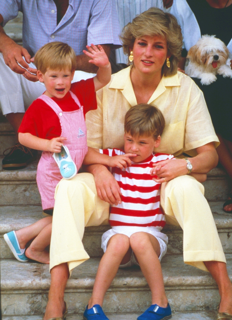 Prince Harry Confirms Feud Brother Prince William Princess Diana