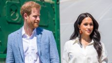 Prince Harry and Meghan Markle Holding Hands During Royal Tour