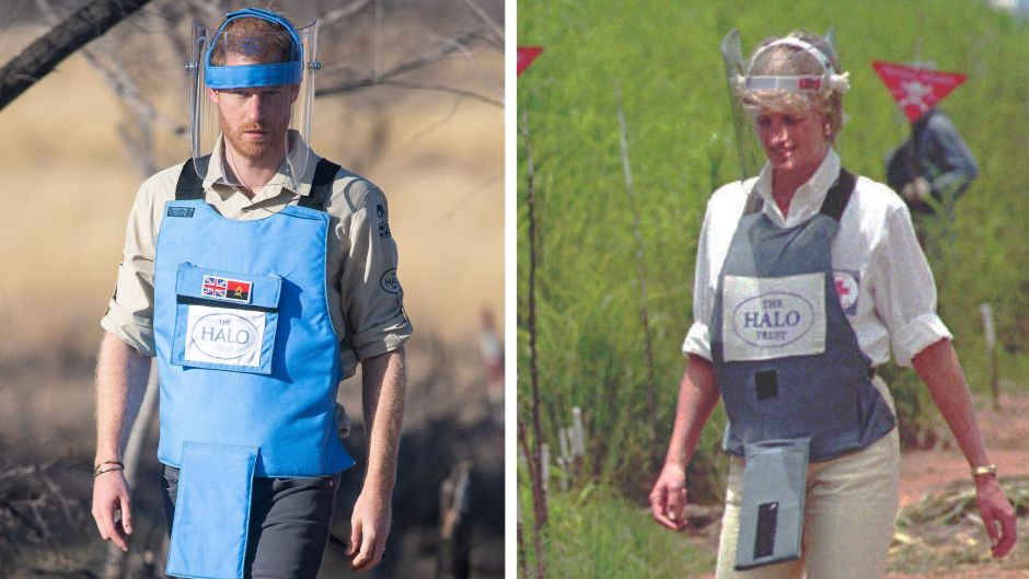 Prince Harry and Princess Diana Side by Side Photo Doing Charity Work