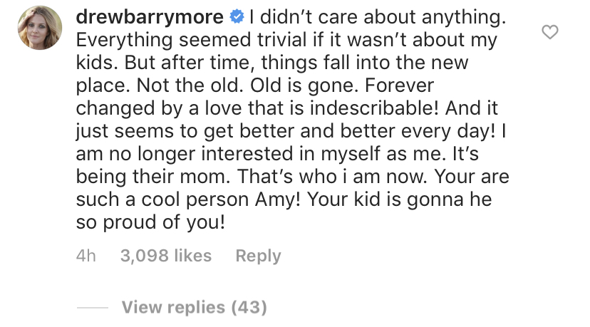 drew-barrymore-amy-schumer-ig-comment