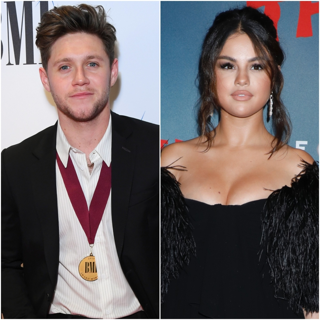 Niall Horan Comments on Selena Gomez New Song