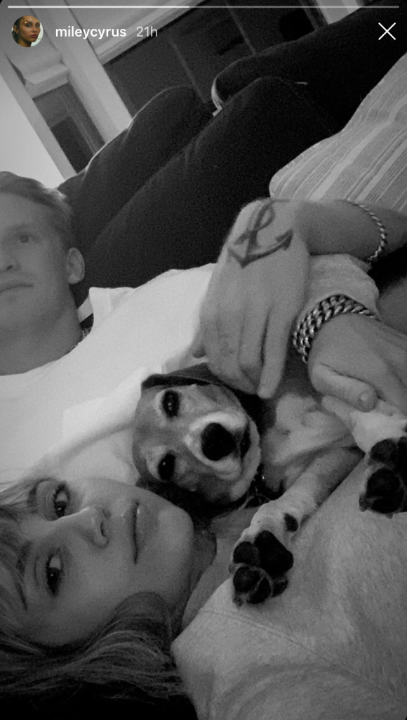 Miley Cyrus and Cody Simpson Snuggling With a Dog