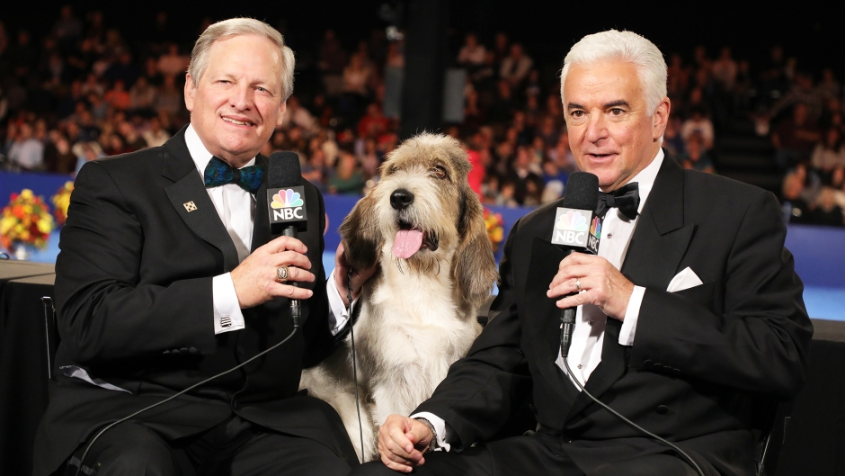the National Dog Show Thanksgiving