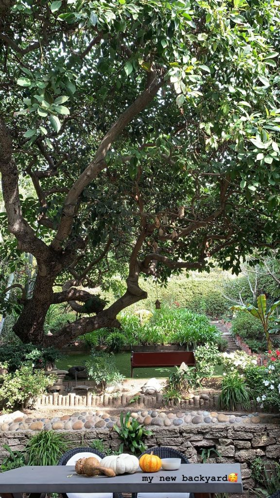 Anastasia Karanikolaou's New Backyard