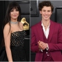 Camila Cabello and Shawn Mendes Walk Grammys Carpet Separate