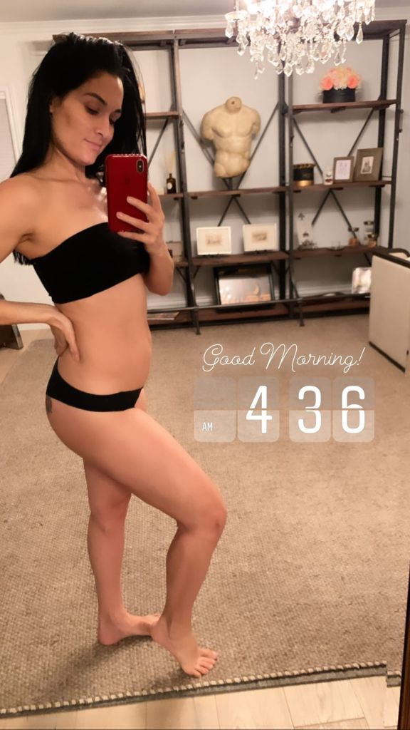 Nikki Bella Shows Growing Baby Bump and Abs in Video