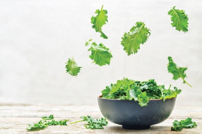 Ocean Remedies Kale