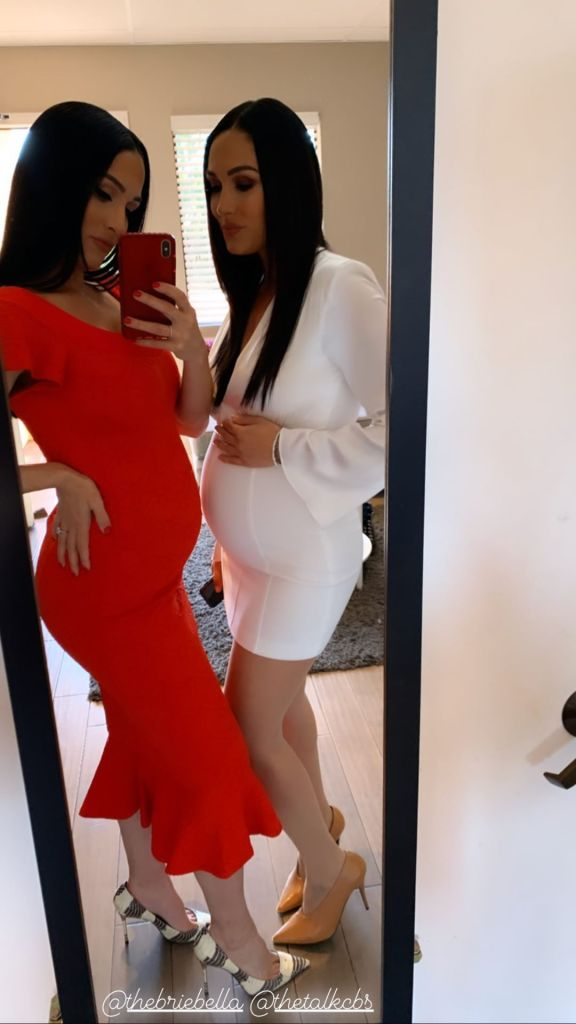 Nikki and Brie Bella's Baby Bumps