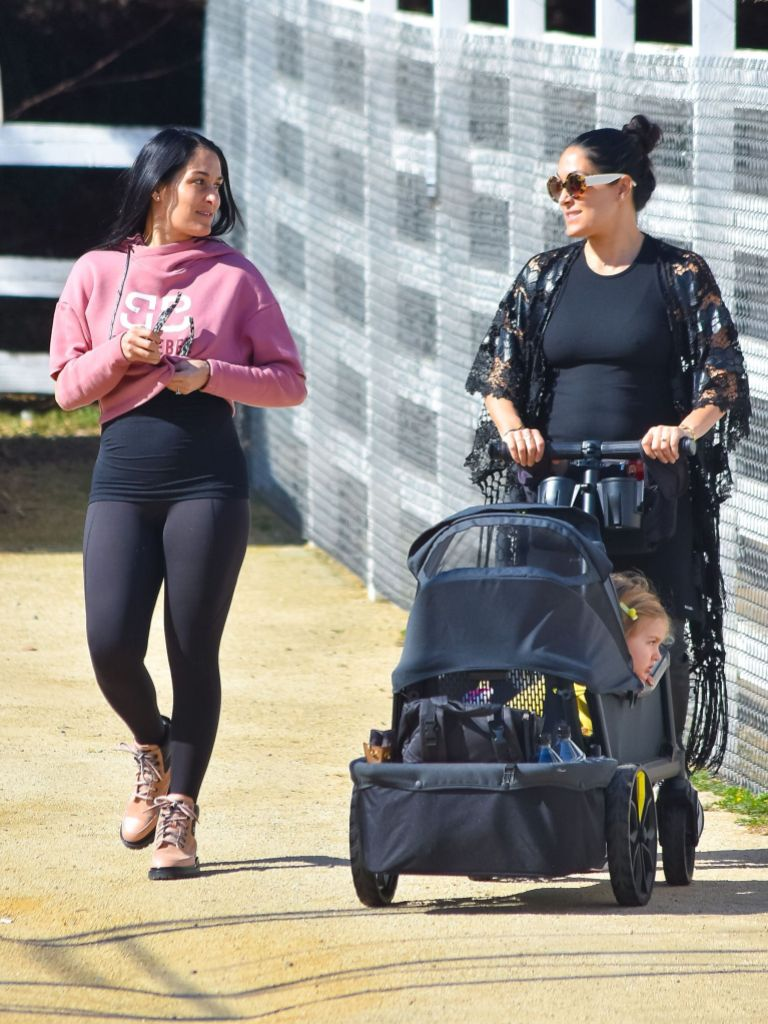 Nikki and Brie Bella Flaunt Baby Bumps in L.A.