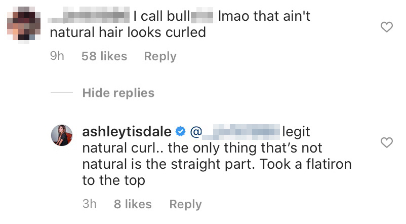 Ashley Tisdale Claps Back at Troll on IG