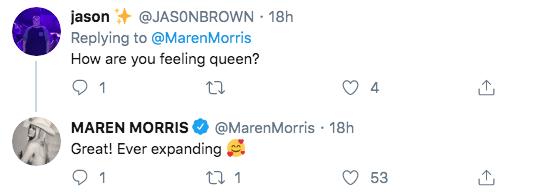maren-morris-ever-expanding-twitter