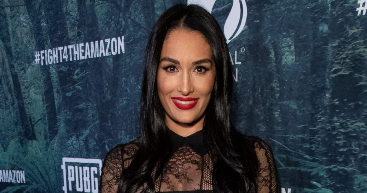 Aww! Pregnant Nikki Bella Is 'So in Love' With Her Baby Already