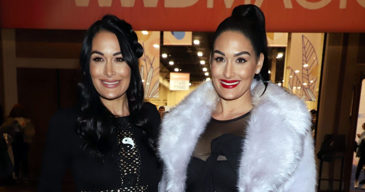 Baby Leos? Nikki and Brie Bella's Due Dates May Be Closer Than We Think